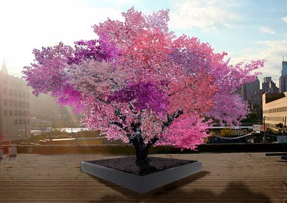 sam-van-aken-tree-of-40-fruit